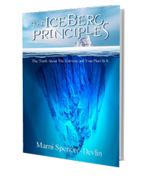 The IceBerg Principles
